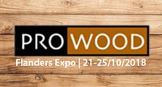 Ontdek onze EI1-deuren op Prowood!